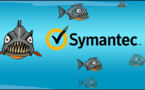 Symantec's breakup is attracting hungry hordes