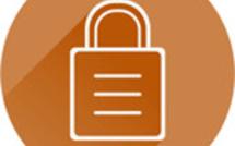 IT Security Partners - Activities